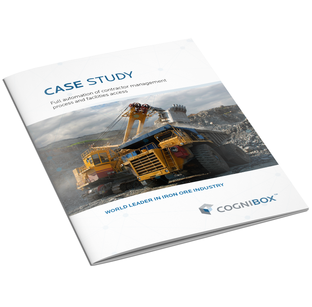 Case Study Iron Industry